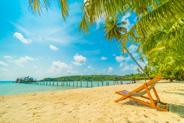 beautiful-tropical-beach-and-sea-with-coconut-palm-tree-in-paradise-island_74190-2207